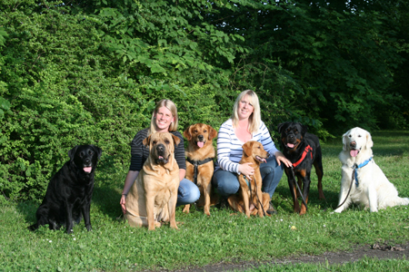 ansvarsförsäkring hund länsförsäkringar